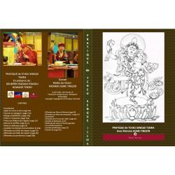 CHOD SENGEY TSEWA - DVD