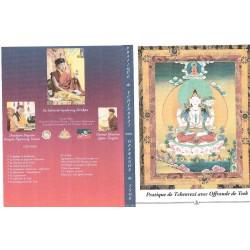 CHENREZI TSOK - DVD