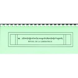 Texto de la gran práctica de Tara Verde (con tsok)