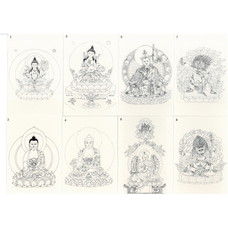 Représentations des pratiques de la lignée Drukpa
