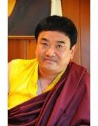 Kyabjé Sey Rinpoché